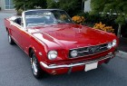 American Cars Legend - 1966 MUSTANG CONVERTIBLE